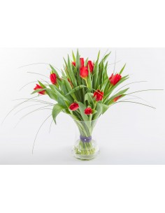 "I Love ""Red"" Tulips"